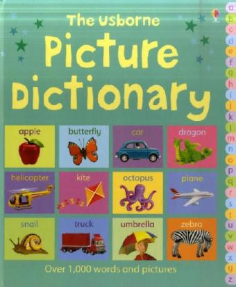 Picture Dictionary als Buch