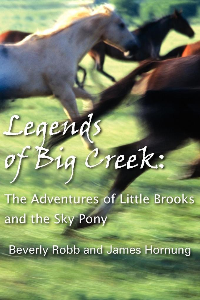Legends of Big Creek: The Adventures of Little Brooks and the Sky Pony als Taschenbuch
