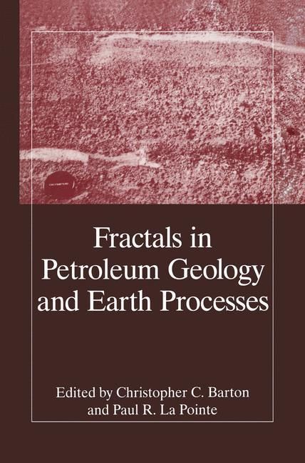 Fractals in Petroleum Geology and Earth Processes als Buch