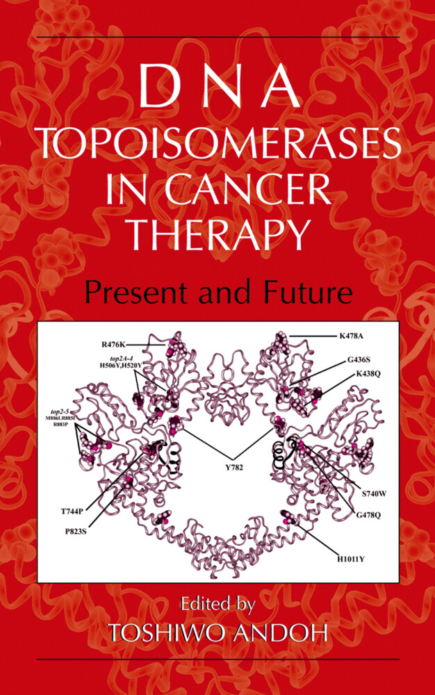 DNA Topoisomerases in Cancer Therapy als Buch