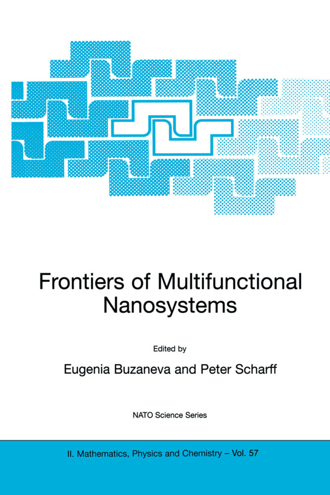 Frontiers of Multifunctional Nanosystems als Buch
