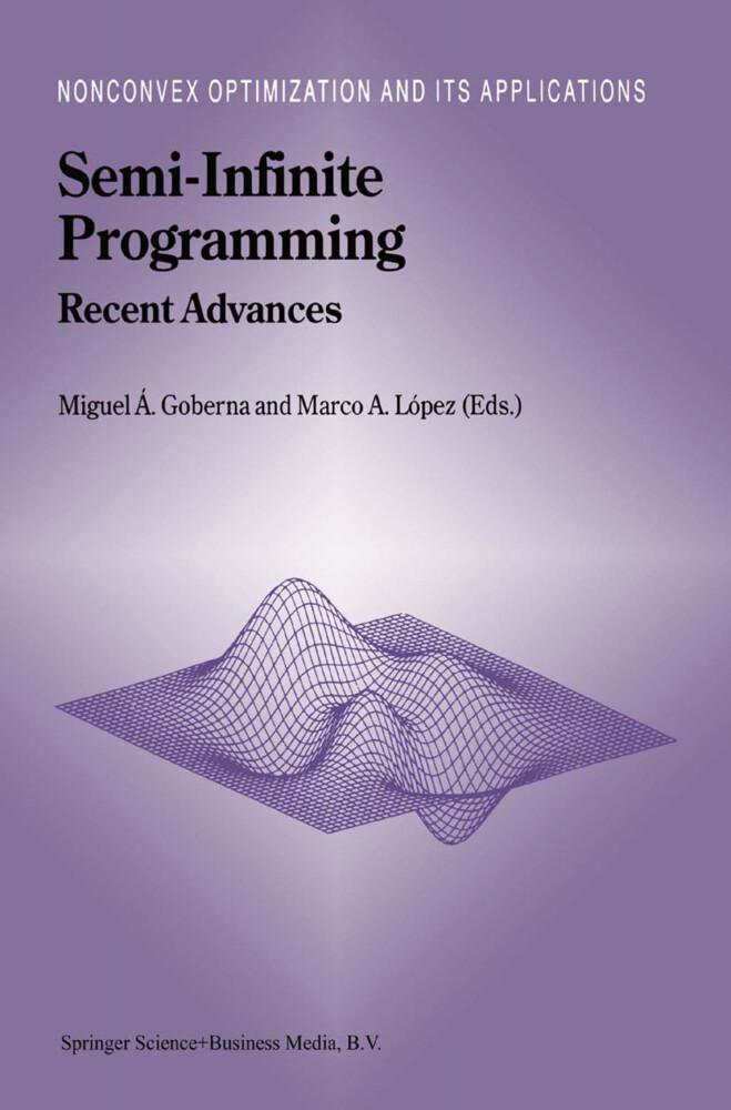 Semi-Infinite Programming als Buch