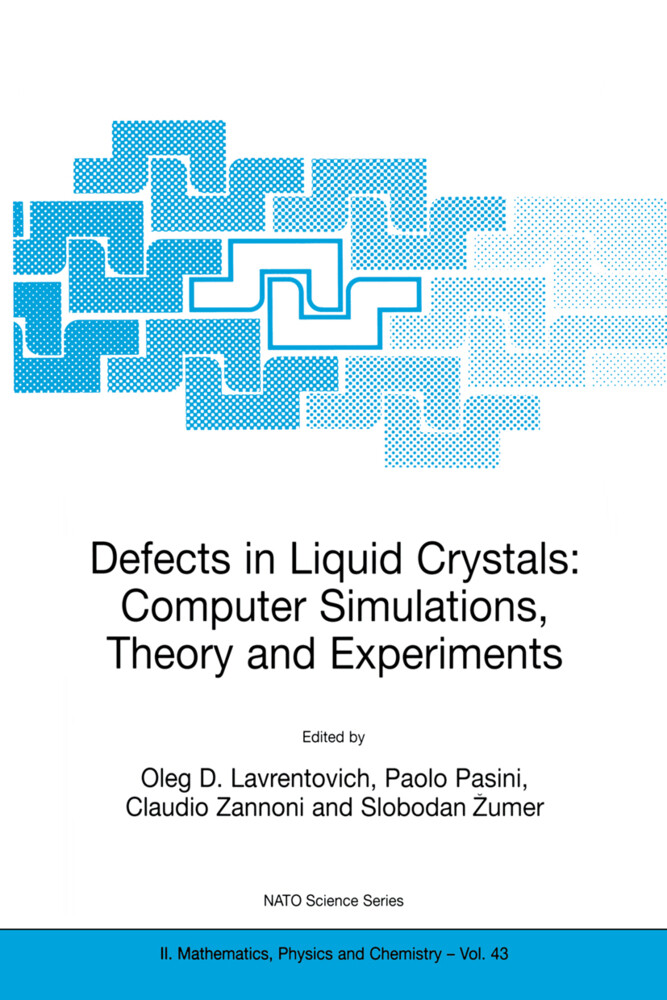 Defects in Liquid Crystals: Computer Simulations, Theory and Experiments als Buch