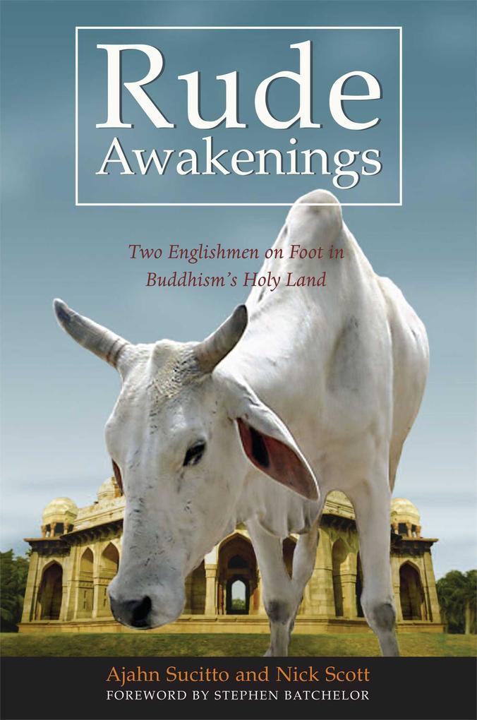 Rude Awakenings als Taschenbuch