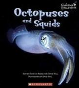 OCTOPUSES & SQUIDS
