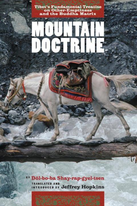 Mountain Doctrine: Tibet's Fundamental Treatise on Other-Emptiness and the Buddha Matrix als Buch