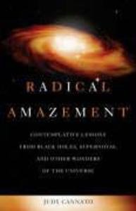 Radical Amazement als Taschenbuch