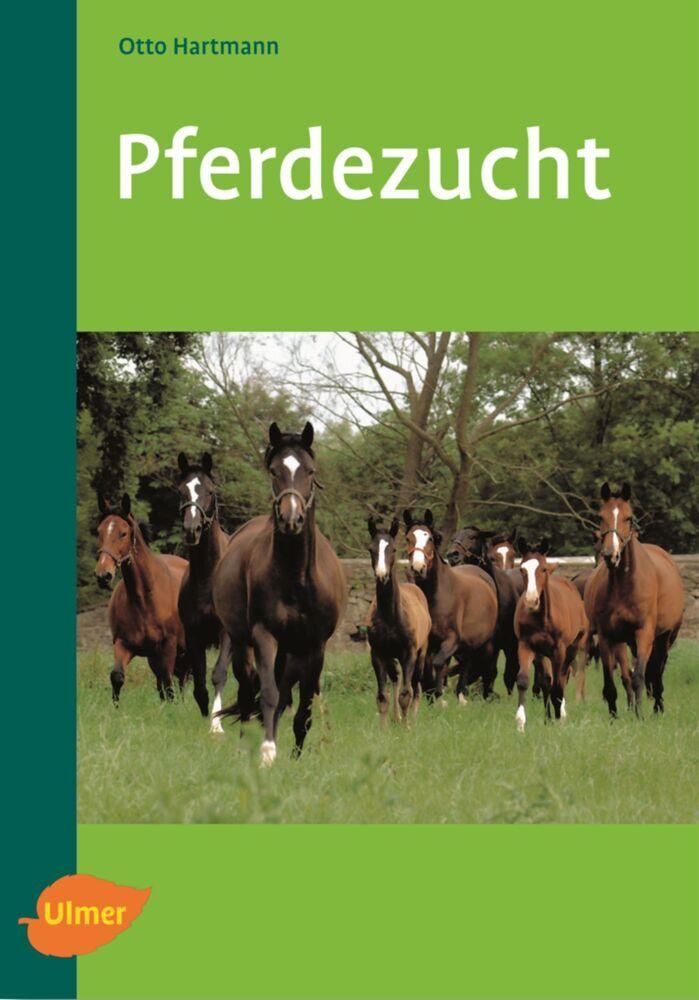 Pferdezucht als Buch von Otto Hartmann