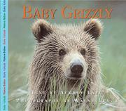 Baby Grizzly