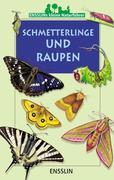 Ensslins kleine Naturführer. Schmetterlinge und Raupen