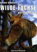 Wilde Füchse - ganz vertraut