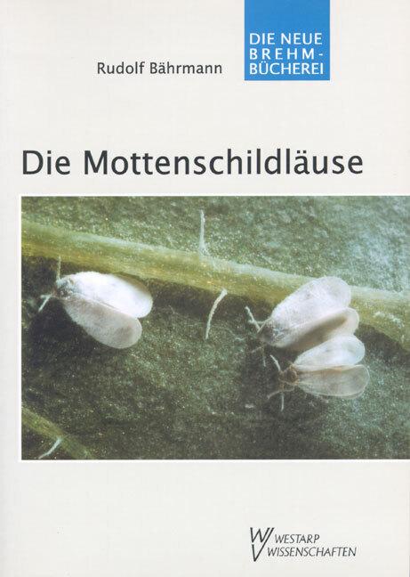 Die Mottenschildläuse als Buch von Rudolf Bährmann