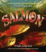 The Life Cycle of the Salmon