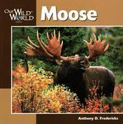 Moose -OSI