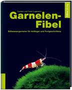 Garnelenfibel