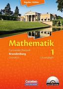 Lernstufen Mathematik. Grundkurs Qualifikationsphase. Schülerbuch. Neues Kerncurriculum. Brandenburg