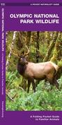 Olympic National Park Wildlife: A Folding Pocket Guide to Familiar Species