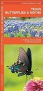 Texas Butterflies & Moths: A Folding Pocket Guide to Familiar Species