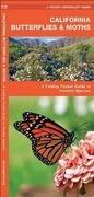 California Butterflies & Moths: A Folding Pocket Guide to Familiar Species