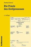 Die Praxis des Zivilprozesses