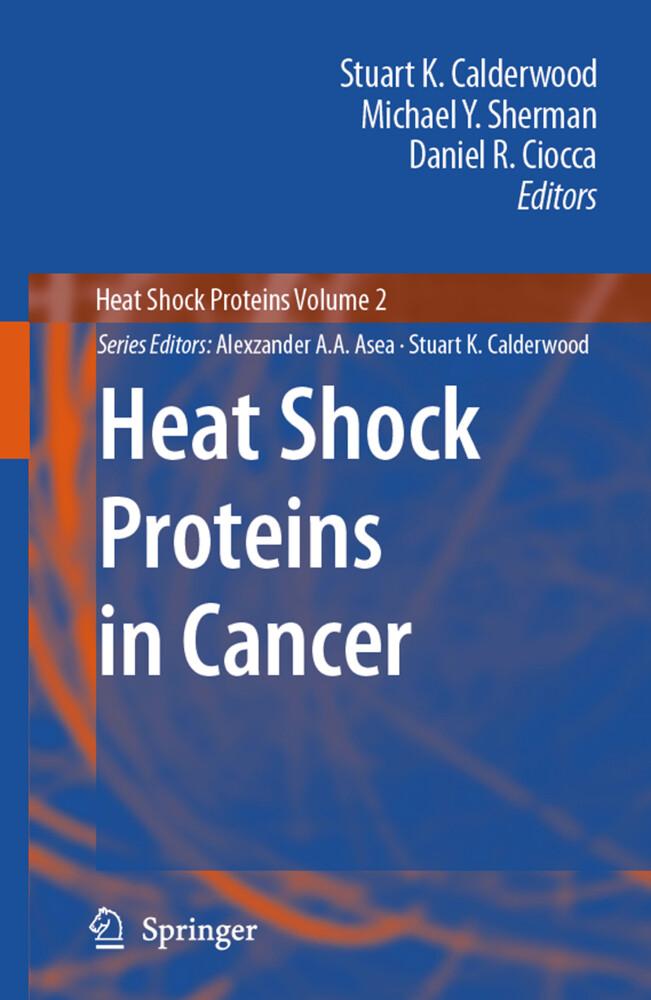 Heat Shock Proteins in Cancer als Buch von