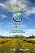 Charting New Pathways to C4 Rice