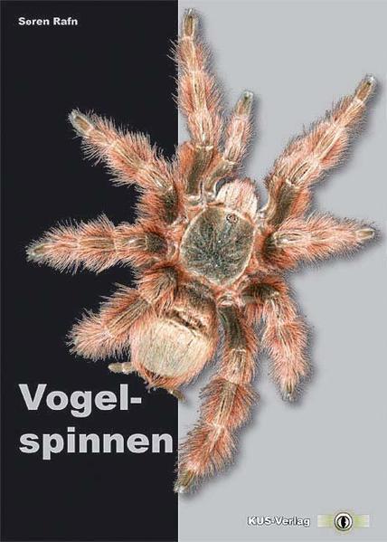 Vogelspinnen als Buch von Søren Rafn