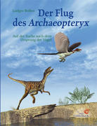 Der Flug des Archaeopteryx