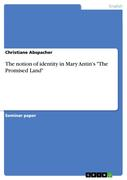 "The notion of identity in Mary Antin's ""The Promised Land"""