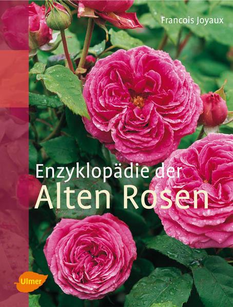 Enzyklopädie der Alten Rosen als Buch von Franc...