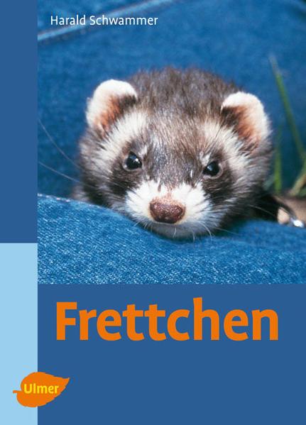 Frettchen als Buch von Harald Schwammer