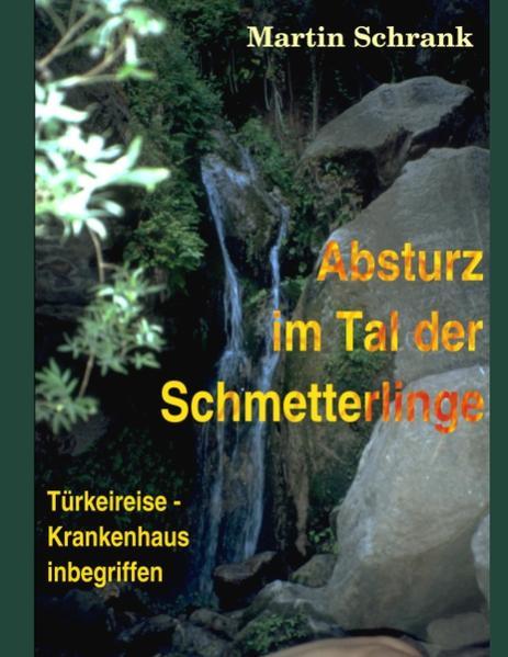 Absturz im Tal der Schmetterlinge als Buch von ...