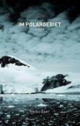 Im Polargebiet