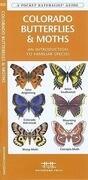 Colorado Butterflies & Moths: A Folding Pocket Guide to Familiar Species