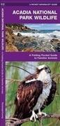 Acadia National Park Wildlife: A Folding Pocket Guide to Familiar Species