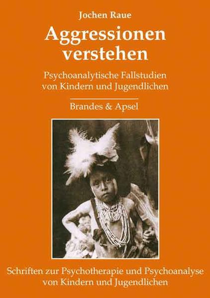 Aggressionen verstehen als Buch von Jochen Raue