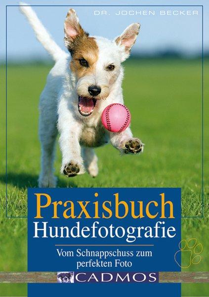 Praxisbuch Hundefotografie als Buch von Jochen ...