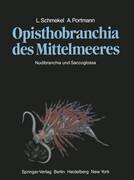 Opisthobranchia des Mittelmeeres