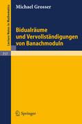 Bidualräume und Vervollständigungen von Banachmoduln