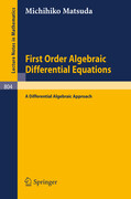 First Order Algebraic Differential Equations