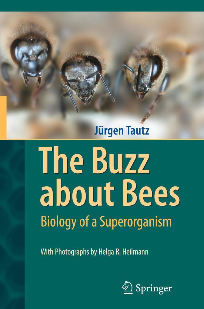 The Buzz about Bees als Buch von Jürgen Tautz