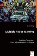 Multiple Robot Teaming