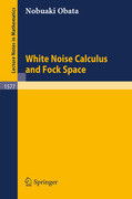 White Noise Calculus and Fock Space