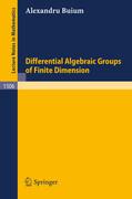 Differential Algebraic Groups of Finite Dimension