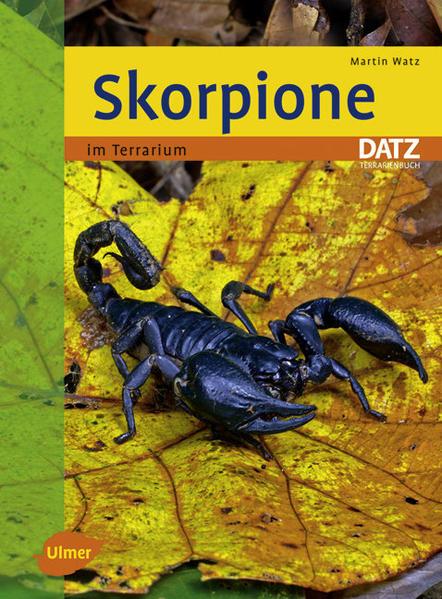 Skorpione im Terrarium als Buch