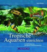Tropische Aquarien einrichten