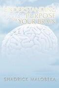 Understanding God's Purpose for Your Brain