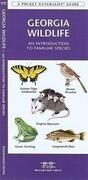 Georgia Wildlife: A Folding Pocket Guide to Familiar Species