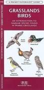 Grasslands Birds: A Folding Pocket Guide to Familiar Species Found in Prairie Grasslands
