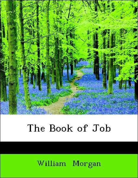 The Book of Job als Taschenbuch von William Morgan